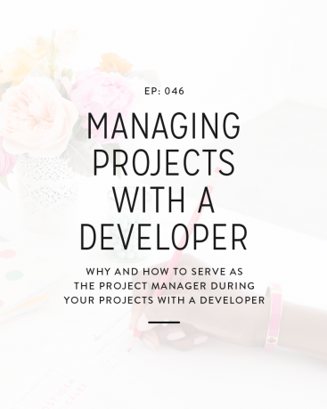046: Managing Projects With A Developer